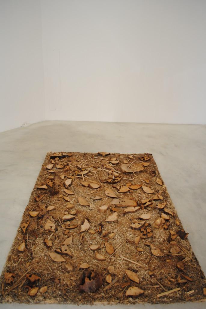 """Tappeto """"Miracolo, è morta!"""", veduta dell'istallazione, trucioli e sezioni di foglie di palma Washington, H 200 x L 141 x P 4 cm 2013."""